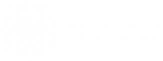 MGT Institute for Consciousness